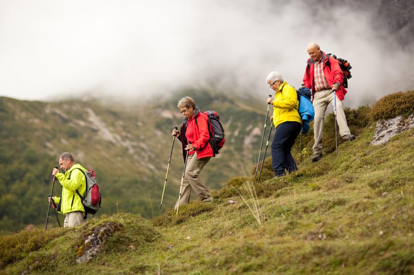 Скандинавская ходьба для пожилых маршрут